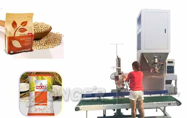 Rice Packaging Machine|Grains Bags Weighing Filling Sealing Machine