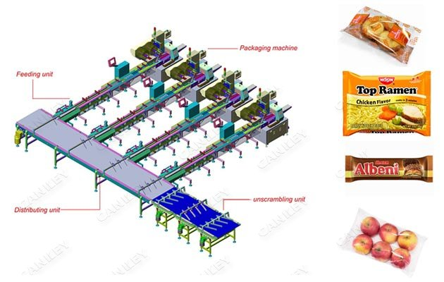 biscuit flow wrapping packing plant